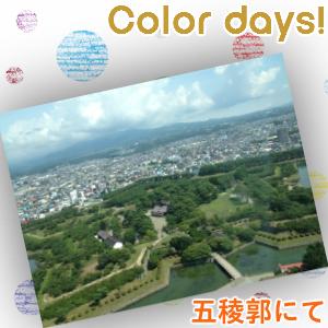 Episode_181『函館旅行記4~函館に来てまでアニメイト』