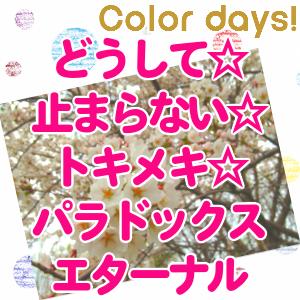 Episode_202『どうして☆止まらない☆トキメキ☆パラドックス エターナル』