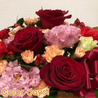 Episode_645『お花でお家に癒やしを』